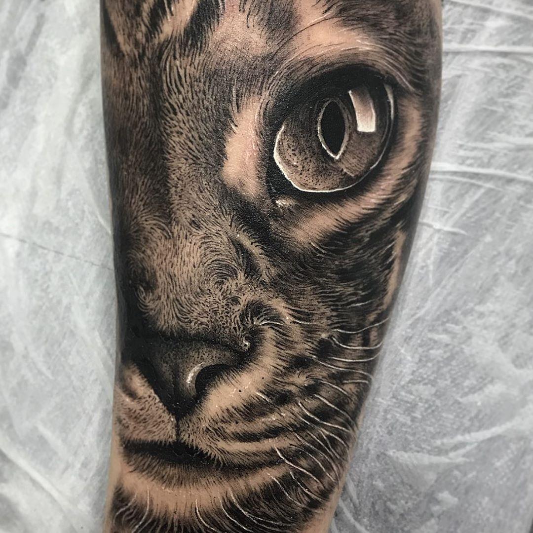 tattoo-tatuagem-gato-cat