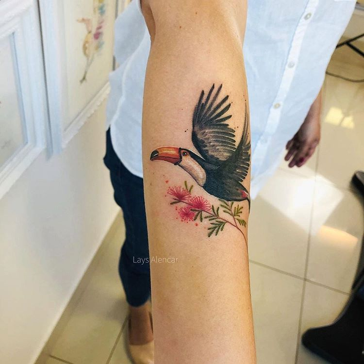 tattoo-tatuagem-tucano